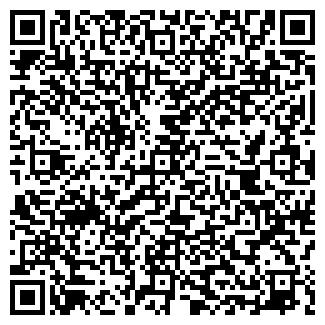 QR-код с контактной информацией организации Terios, ЧП