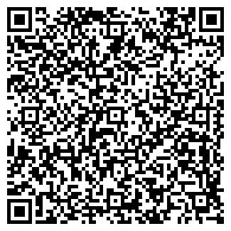 QR-код с контактной информацией организации kolesomag