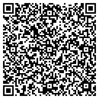 QR-код с контактной информацией организации Субъект предпринимательской деятельности workiron