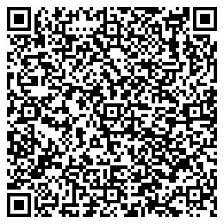 """QR-код с контактной информацией организации ИП""""DOMOFON"""""""