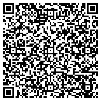 """QR-код с контактной информацией организации ООО """"АЛАЙ"""""""