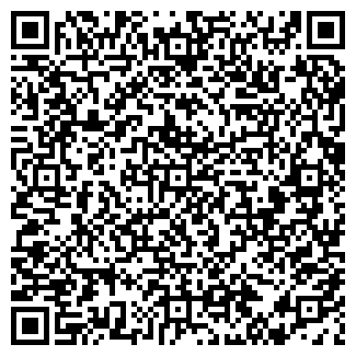 QR-код с контактной информацией организации Электроплюс, ЧП