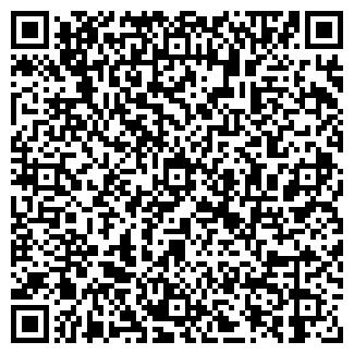 QR-код с контактной информацией организации Арманов, ИП
