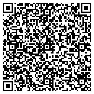 QR-код с контактной информацией организации Субъект предпринимательской деятельности Damm Auto