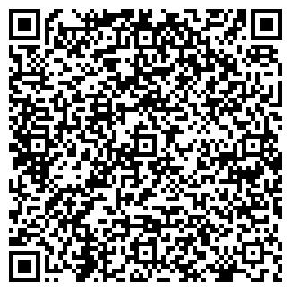 QR-код с контактной информацией организации Силовые электрические машины, ООО