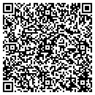 QR-код с контактной информацией организации ДИРС