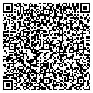 QR-код с контактной информацией организации TORX, Компания