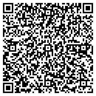QR-код с контактной информацией организации Пневматик, ЧП