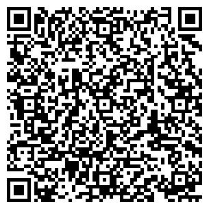 QR-код с контактной информацией организации Домовой,ЧП