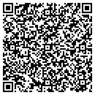 QR-код с контактной информацией организации Бадис, ТОО