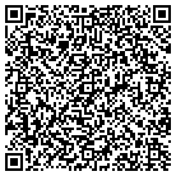 QR-код с контактной информацией организации Субъект предпринимательской деятельности ИП Михайловский В.И.