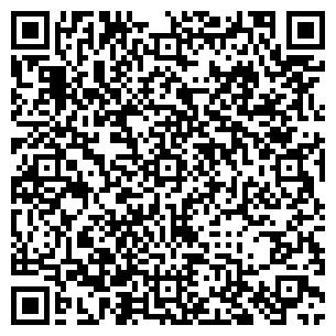 QR-код с контактной информацией организации Пыли-нет, СПД
