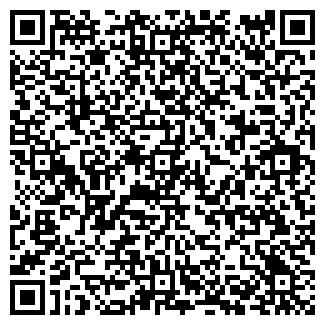 QR-код с контактной информацией организации НОВАЯ ЗВЕЗДА