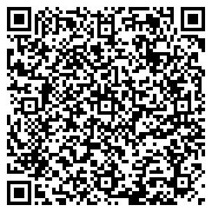 QR-код с контактной информацией организации Металсмарт , ЧП
