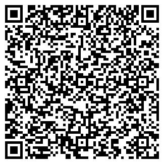 QR-код с контактной информацией организации ВЬЮГОВЕЙ