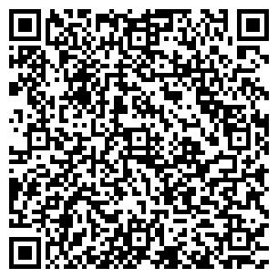 QR-код с контактной информацией организации Васькова Е. С., ИП