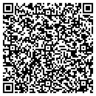 QR-код с контактной информацией организации Hiline, ЧП
