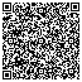 QR-код с контактной информацией организации Сибастана