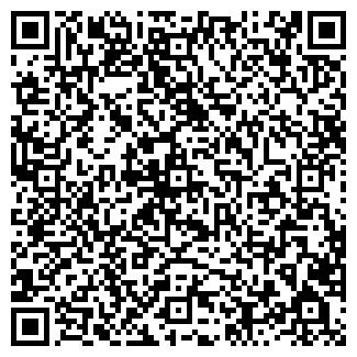 QR-код с контактной информацией организации тоо белоруссия