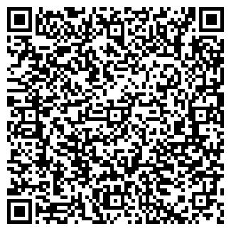 QR-код с контактной информацией организации Сиркизюк, ЧП