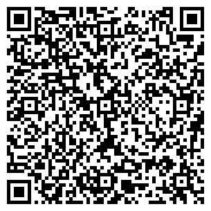 QR-код с контактной информацией организации Тищенко, ЧП