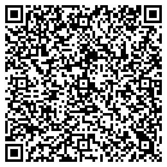 QR-код с контактной информацией организации Пайнберри, ООО