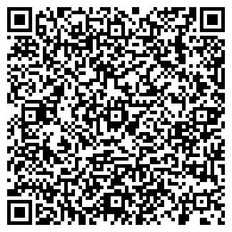 QR-код с контактной информацией организации Эльдорадо, СФХ