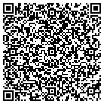 QR-код с контактной информацией организации Дизис, ЧП (Dizis)