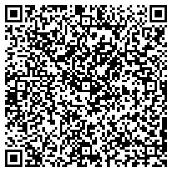QR-код с контактной информацией организации SHEVTSOV MOTORS