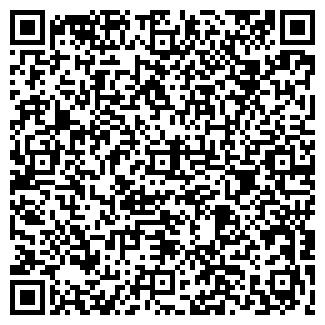 QR-код с контактной информацией организации Гошин, ЧП