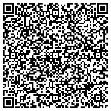 QR-код с контактной информацией организации Чемерис, ЧП