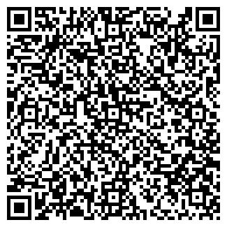 QR-код с контактной информацией организации Nanosoul,ИП