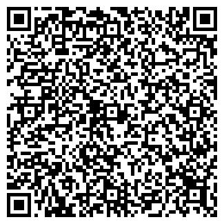 QR-код с контактной информацией организации ИП Абишева Ж.