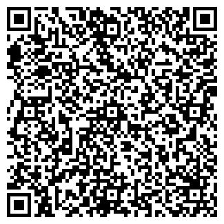 QR-код с контактной информацией организации ИП Лучко В.Н.
