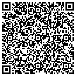 QR-код с контактной информацией организации Кодисфар, ООО