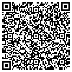 QR-код с контактной информацией организации Merloks (Мерлокс), ТОО