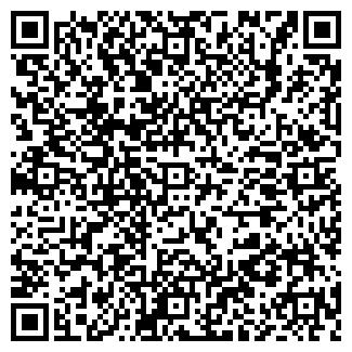 QR-код с контактной информацией организации ип дангилов