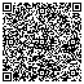 QR-код с контактной информацией организации Помидорчик (интернет магазин), ЧП