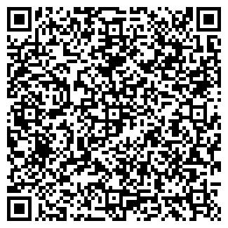 QR-код с контактной информацией организации Алина, ЧП ( Домашняя птица Донецк )