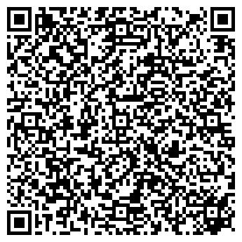 QR-код с контактной информацией организации Алина, ЧП
