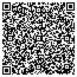 QR-код с контактной информацией организации Бинад, ООО