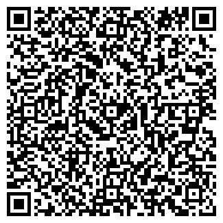 QR-код с контактной информацией организации ООО Дайнег