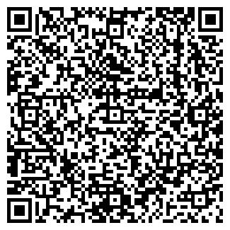 QR-код с контактной информацией организации Субъект предпринимательской деятельности ИП Фрейдман