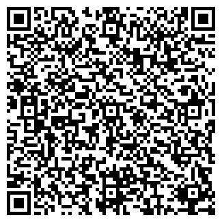 """QR-код с контактной информацией организации """"Nail system"""""""