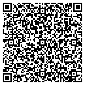 QR-код с контактной информацией организации «Pilki»