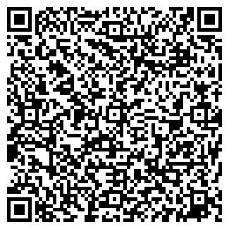 QR-код с контактной информацией организации Stokua, ЧП