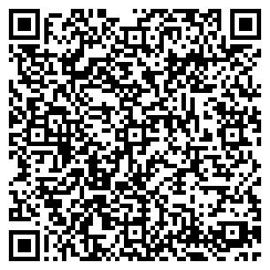 QR-код с контактной информацией организации Арт - Ель, ЧП