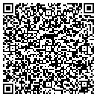 QR-код с контактной информацией организации Домини, ЧП