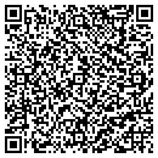 QR-код с контактной информацией организации Вирту+, ООО