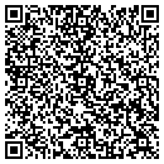 QR-код с контактной информацией организации ДИМ, ООО